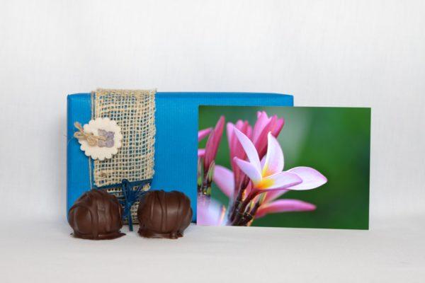 manfla-grusskarta-baliblume-geschenk