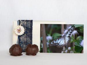 manfla-grusskarte-schmetterling-geschenk
